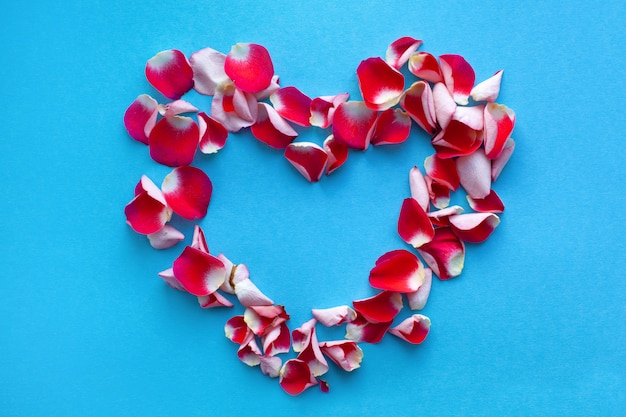 青色の背景にハートの形をした赤いバラの花びら