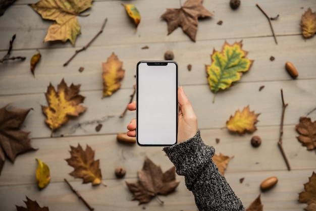 秋の紅葉に近い空白の白い画面を持つスマートフォン