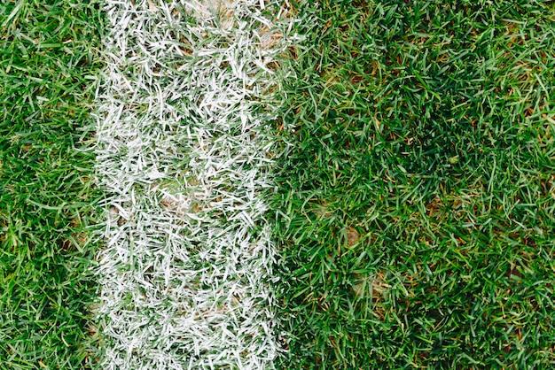 草やサッカーやサッカーのフィールド上のマークのクローズアップ