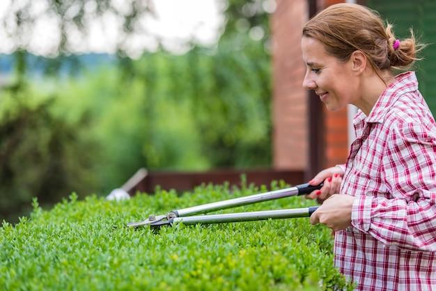 ガーデンの整備