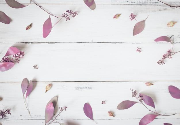 花の組成ピンクの花とユーカリの枝の白い背景の上のパターン