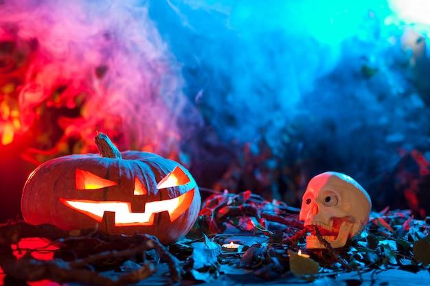 Хэллоуин тыква в мистическом лесу ночью.