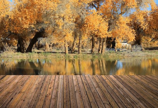 美しい空と川を床に