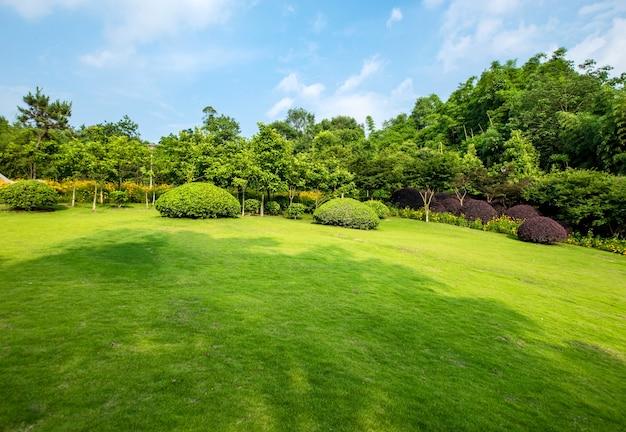 草原風景と緑化環境公園の背景