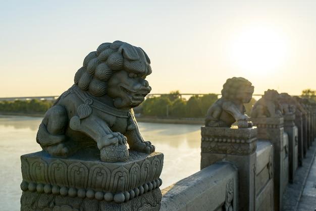 紫禁城ライオンズ