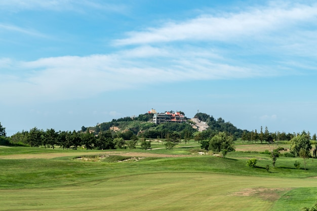 中国青島のゴルフ場の広い草原