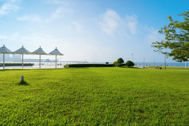 中国青島の公園の芝生