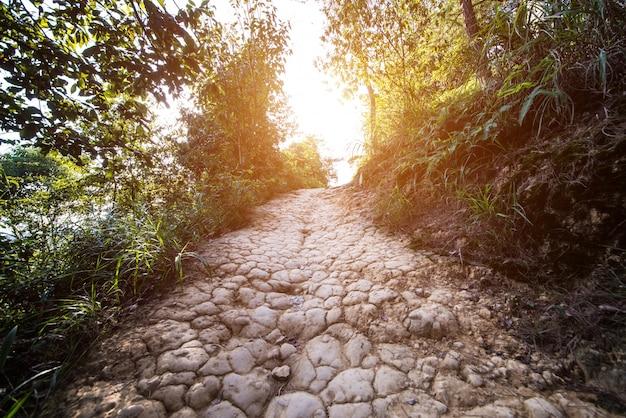 田舎の未舗装の道路