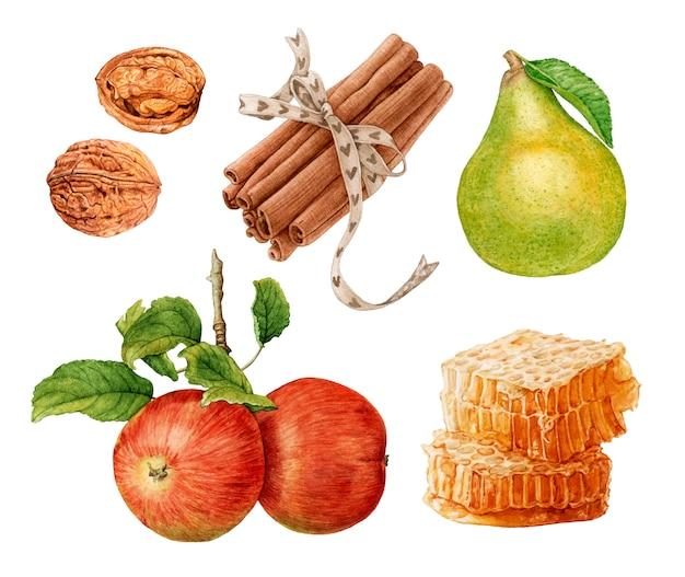水彩のリンゴ、梨、シナモン、ハニカム、クルミ。