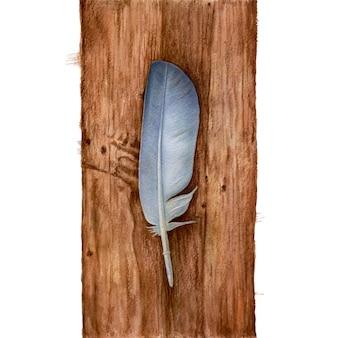 木製のテーブルに水彩羽