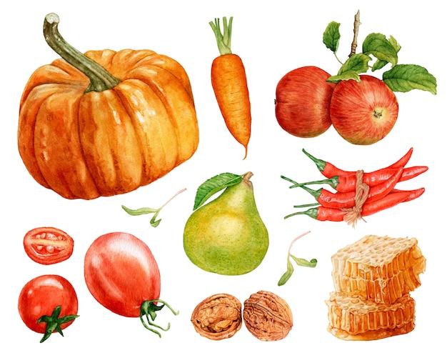 Акварель фруктов и овощей, изолированные на белом фоне.