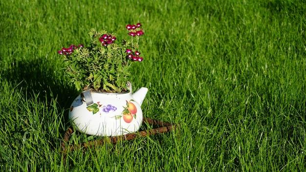 緑の芝生の上のガラスの瓶に紫と白のポットの花束