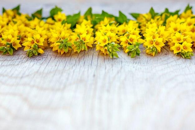 木製の素朴な背景に黄色の花が咲きました。セレクティブフォーカス。