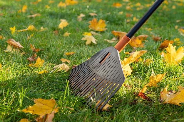 芝生から集まる葉の熊手。閉じる。秋の庭公園の清掃。秋の葉の集まり。清潔さの。環境を守ること。