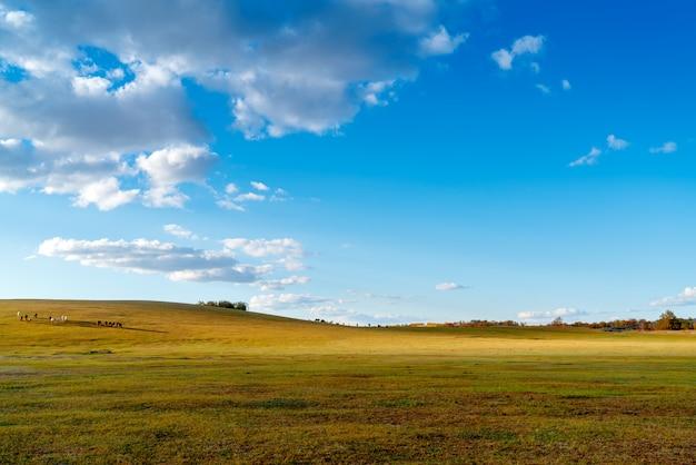 草原の夕暮れの風景