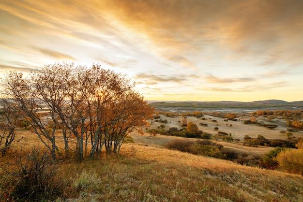 内モンゴルの秋の草原