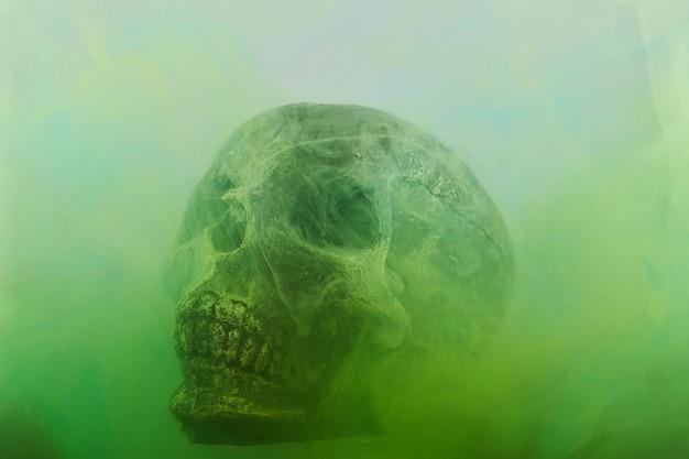 頭蓋骨と水の中のインク