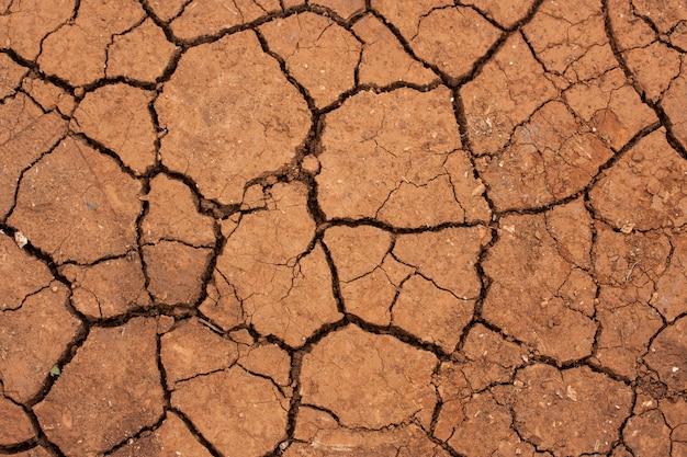 乾燥した砂漠の床