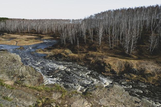 秋の山川ストリーム風景。