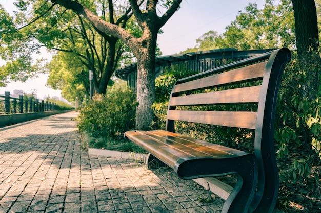 Зеленый парк города