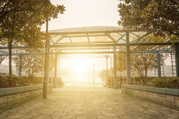 Природы роста города весна свет