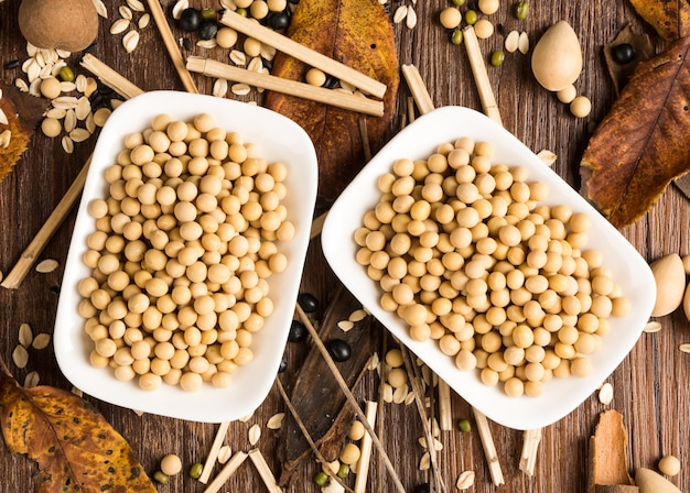 セラミックボウルでの大豆の上面図