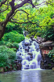 美しい自然の滝