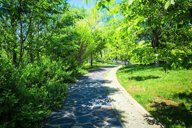 Красивый городской парк