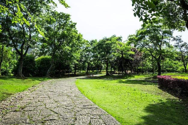 バンコク、タイの庭園