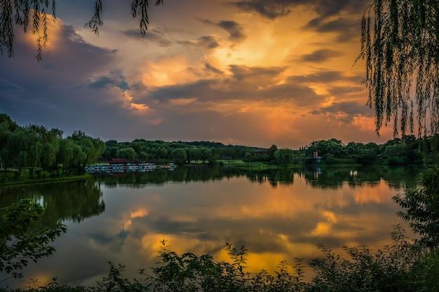 森の湖の美しい夕日