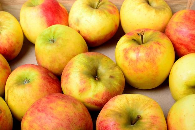 リンゴを作るリンゴ