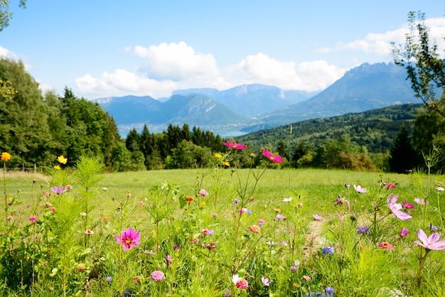 バックグラウンドで山と花
