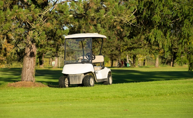 Тележки для гольфа на поле для гольфа