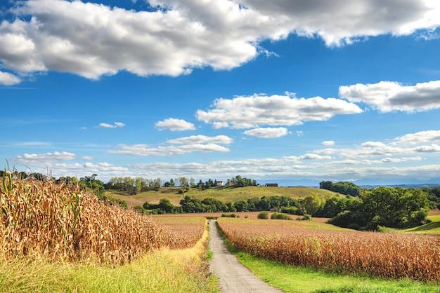 ピレネーアトランティックのフランスの田舎の眺め