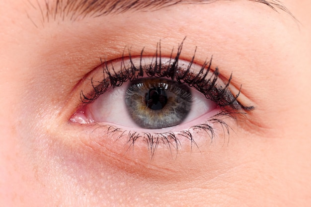 Макро женский глаз