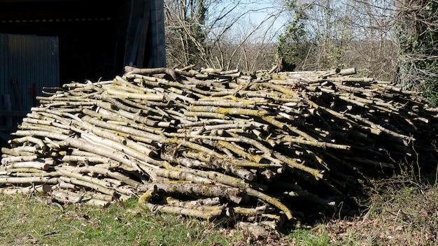 暖炉のための屋外の木の山