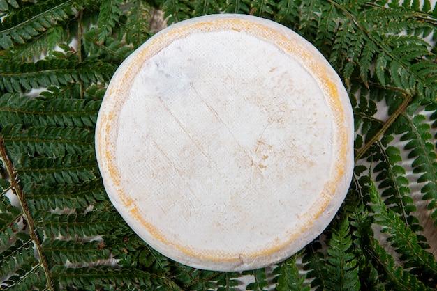 美味しいマウンテンフレンチチーズリブロック、サヴォワ製品