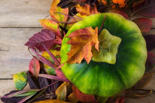 Осенний деревенский фон с зеленой тыквой