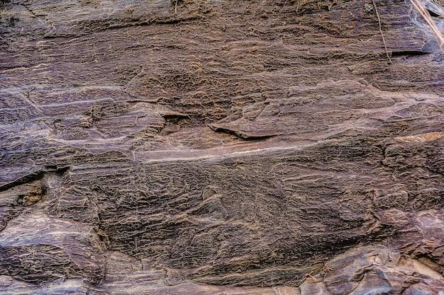 茶色の風化岩