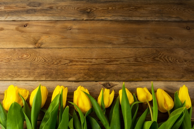 木製の背景、コピースペースに黄色のチューリップ行
