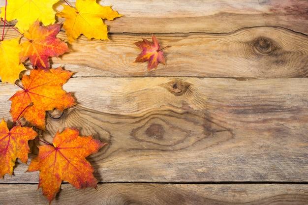 秋の背景に黄色とオレンジ色の秋のカエデの葉、