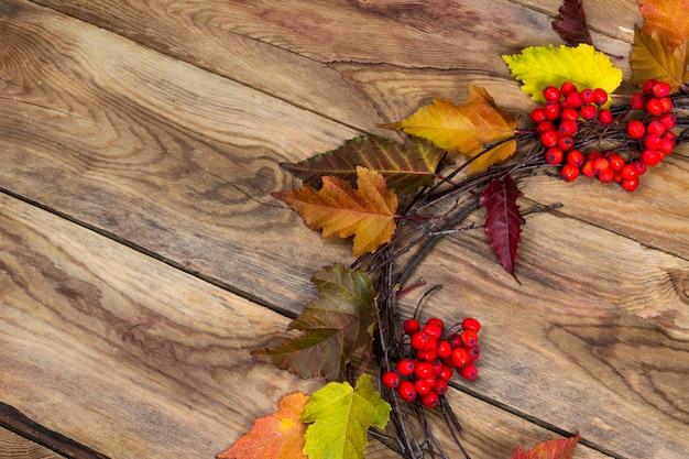 熟したナナカマドの果実のドアの花輪と秋の背景、