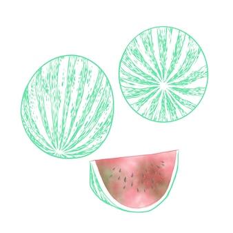 Арбуз фрукты
