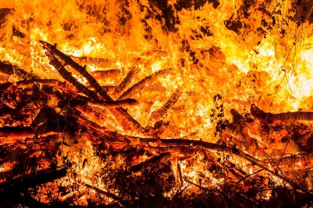 火、草や小さな木を燃やす。