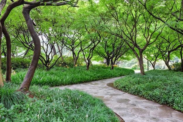 植物や石の経路と公園
