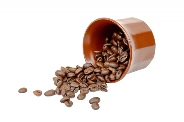 コーヒーの種子
