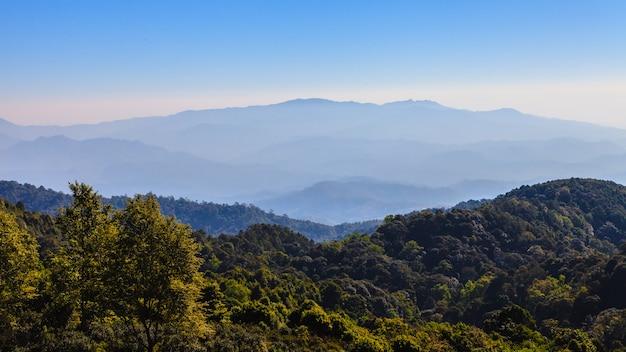 Аэрофотоснимок тропического леса и горы