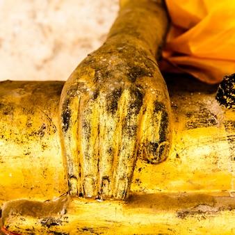 仏の手の画像をクローズアップ