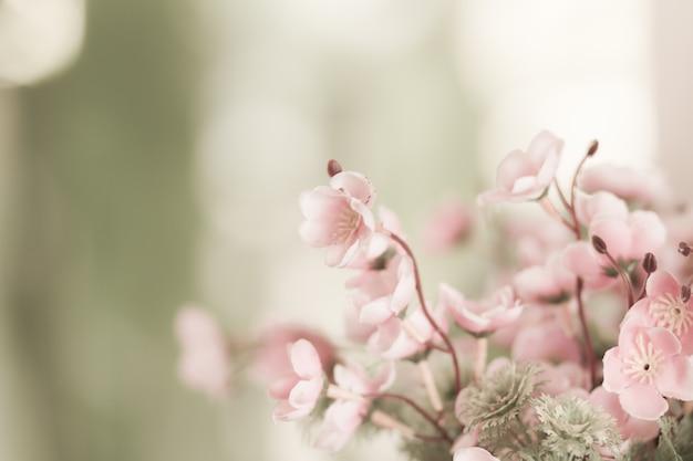 Розовые цветы на природе, крупным планом
