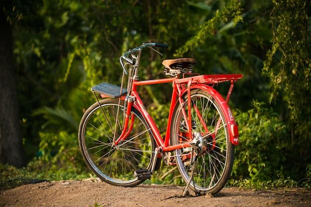 庭で赤いビンテージ自転車